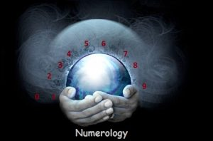 numerologist report