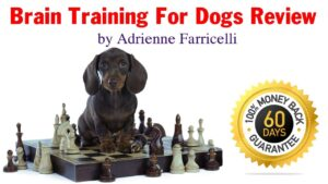 adrienne farricelli brain training for dogs